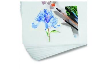 Come scegliere la carta per acquerello?